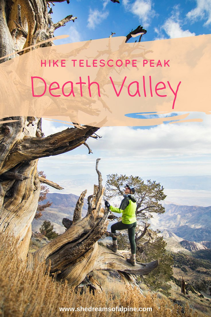 hike-death-valley-national-park-telescope-peak-california-bristlecone-pine-tree