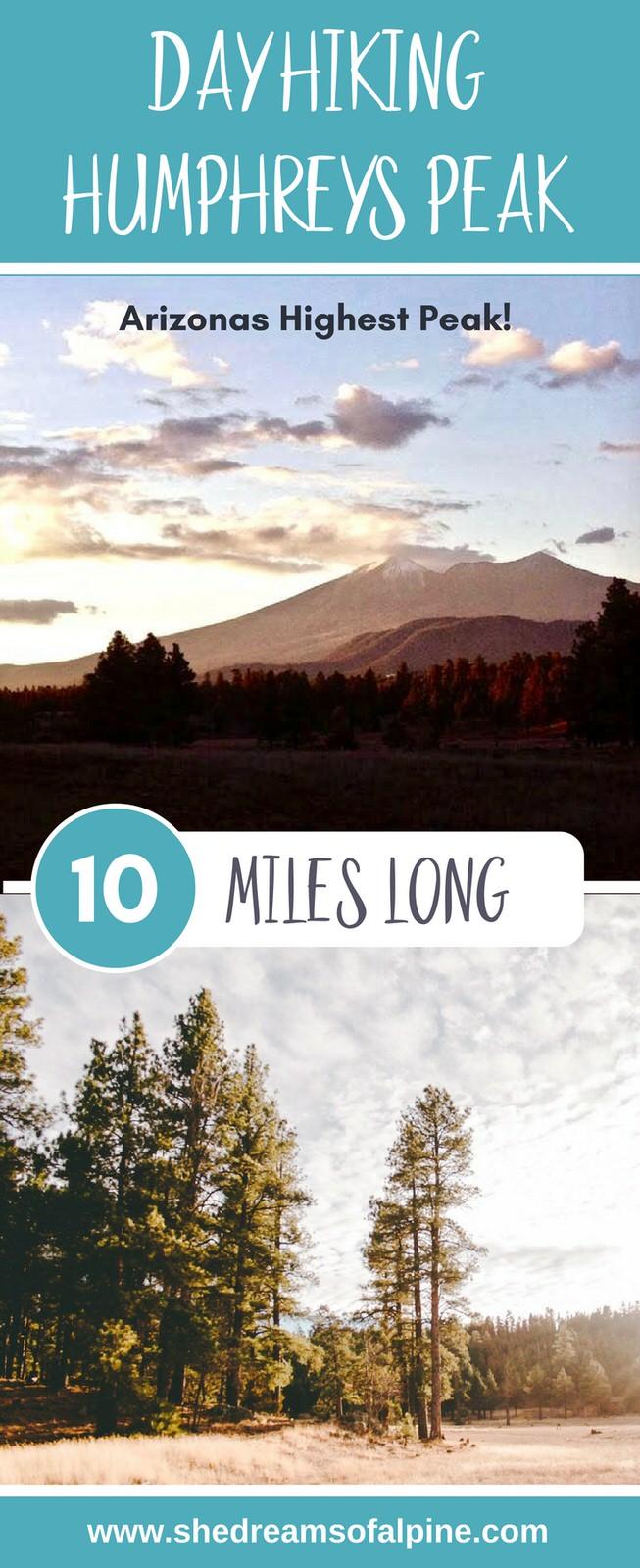 10 Miles Day Hiking Humphreys Peak Trail in Arizona
