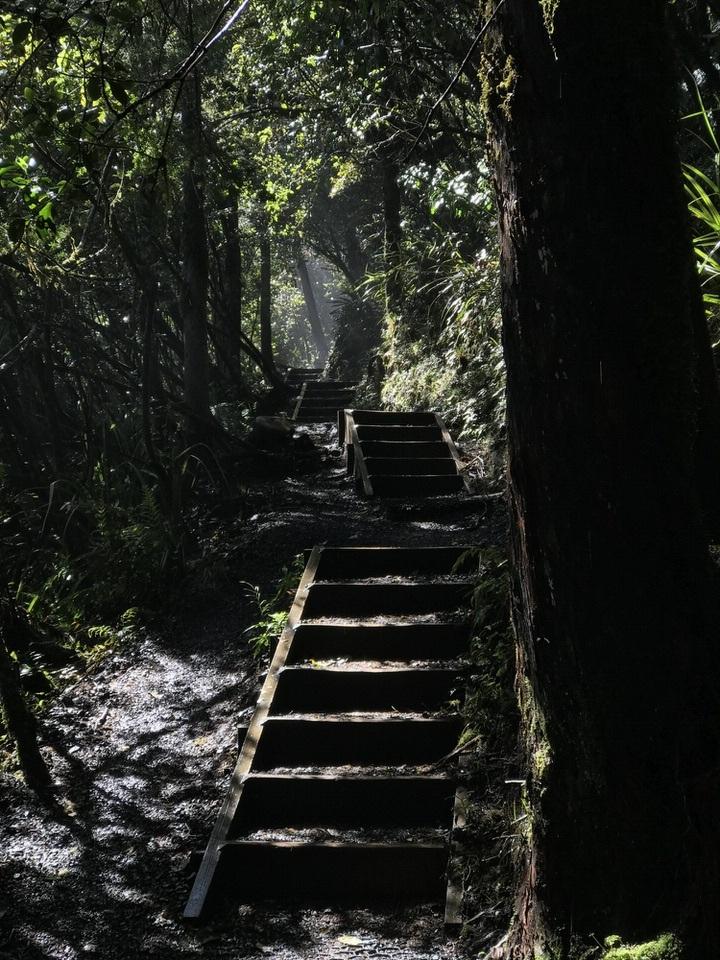 trail-tongariro-alpine-crossing-new-zealand