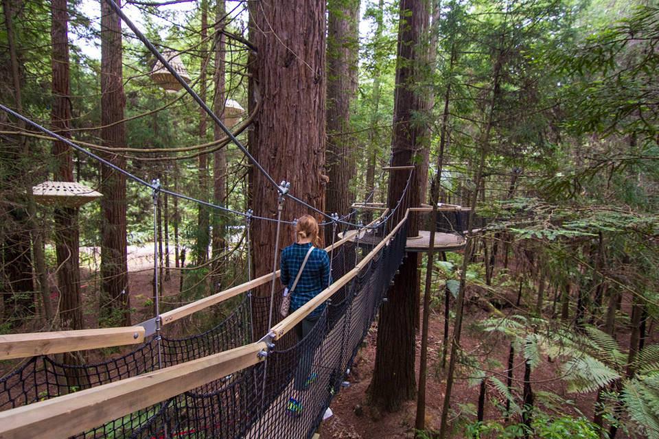 girl-hiking-in-trees-rotorua-new-zealand-north-island