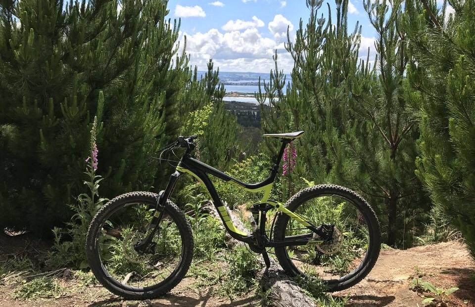 mountain-bike-rotorua-new-zealand-north-island