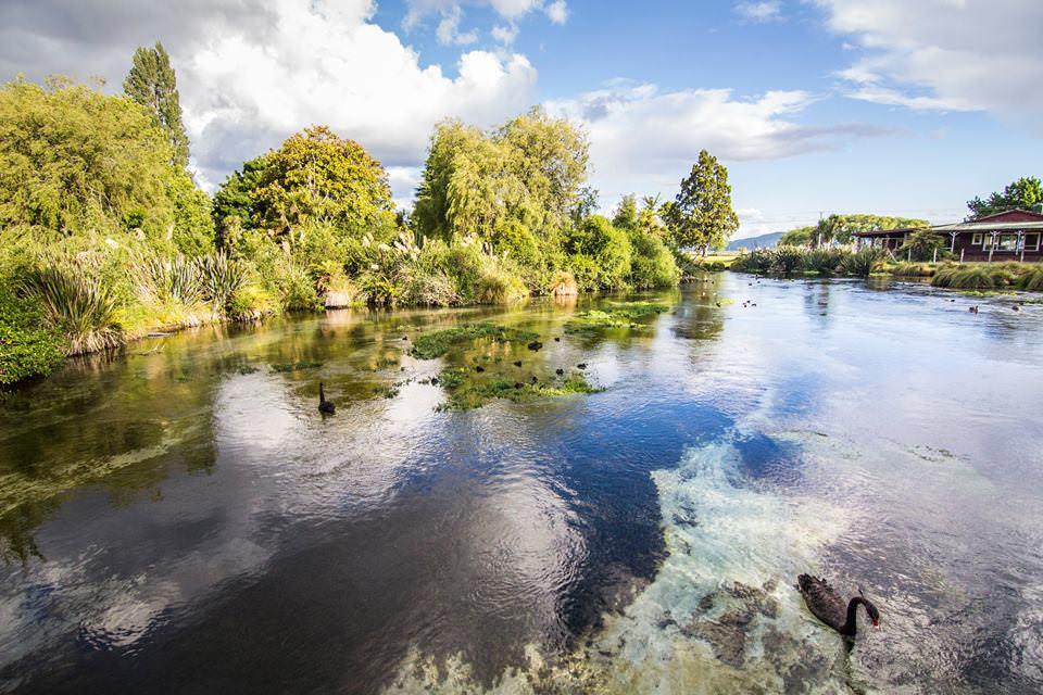hamurana-springs-rotorua-new-zealand-north-island