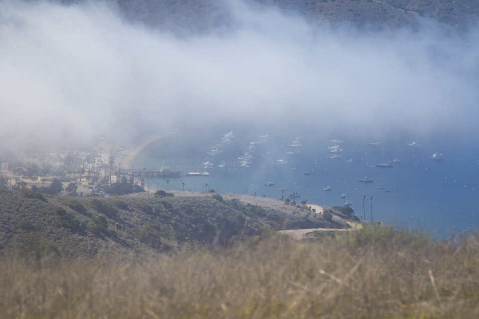 view-of-two-harbors-from-trans-catalina-trail