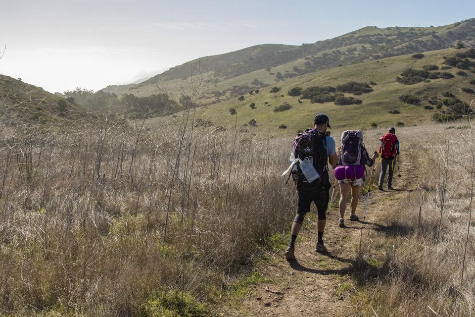 hiking-in-field-trans-catalina-trail