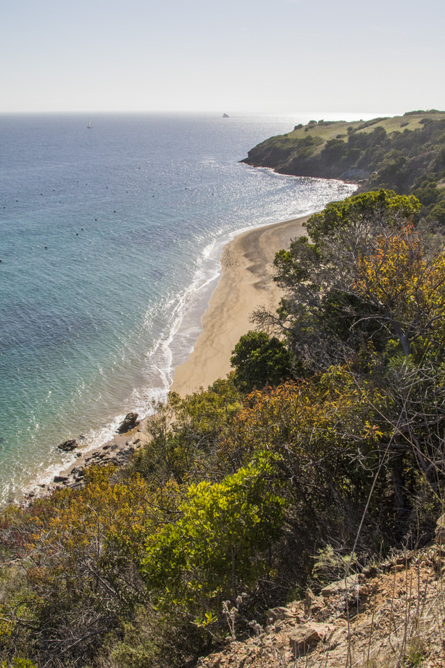 catalina-island-coastline
