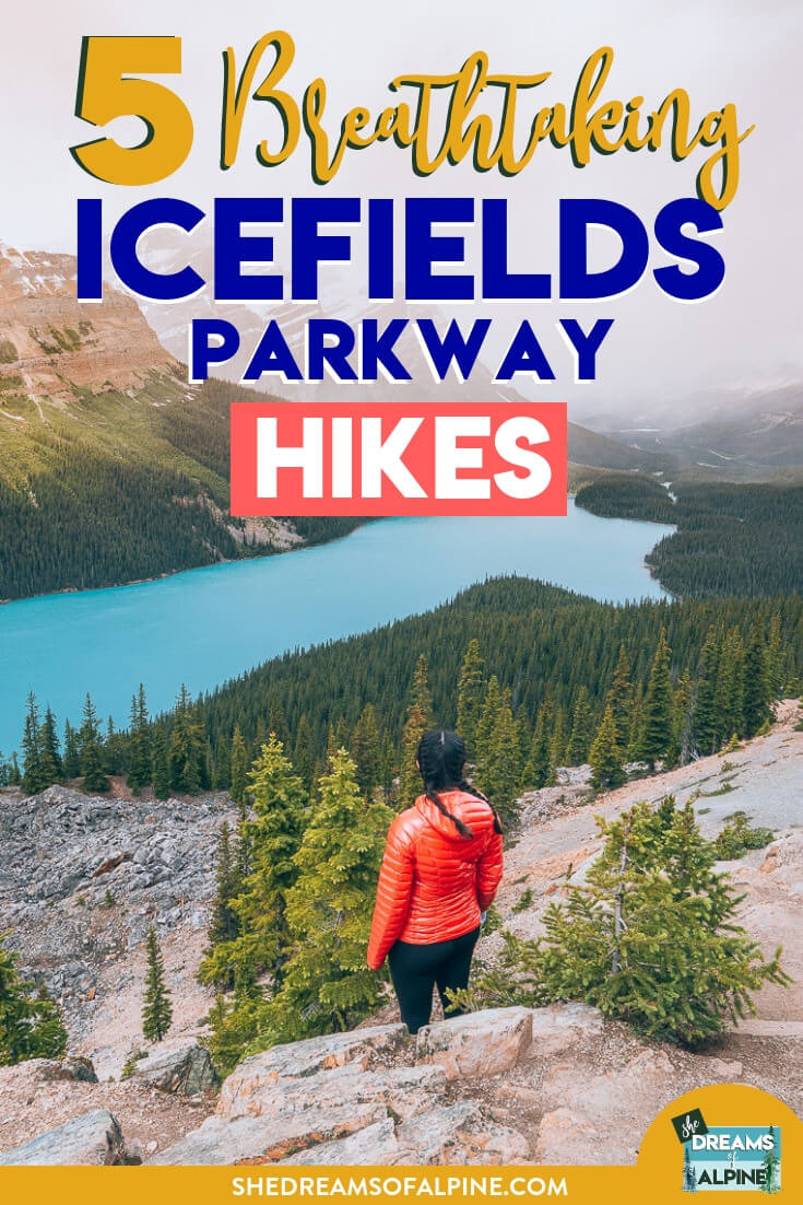 5 Breathtaking Icefields Parkway Hikes |  The Icefields Parkway is the connecting highway to and from Banff and Jasper National Parks in Canada. Along the way, there are jaw-dropping trails, towering mountains, sparkling blue lakes, and stunning waterfalls. This guide details 5 of the most breathtaking hikes along Icefields Parkway. Check it out! | shedreamsofalpine.com
