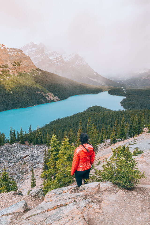 The Peyto Lake Lookout is one of the best Icefield Parkway Hikes!