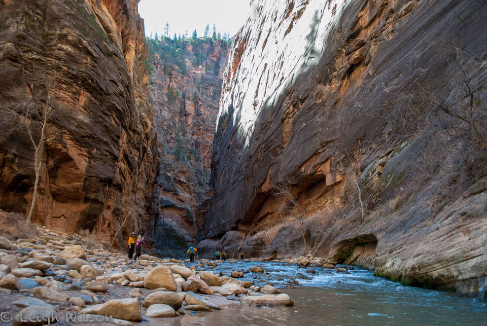 Hiking the narrows in zion national park, utah