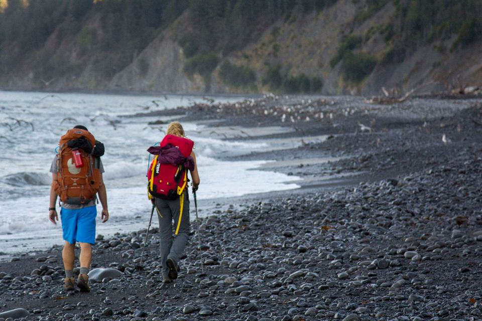 Rocks and pebbles line the beach of the Lost Coast Trail, creating uneven terrain for hiking on.