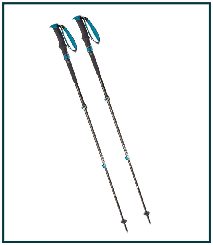 I bring my hiking trekking poles on every day hike! These are some of the best hiking gear to invest in.