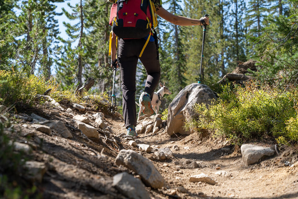 Hiking the Alice Lake Trail in the Sawtooth Mountains