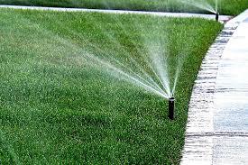 lawn maintenance blog.jpg