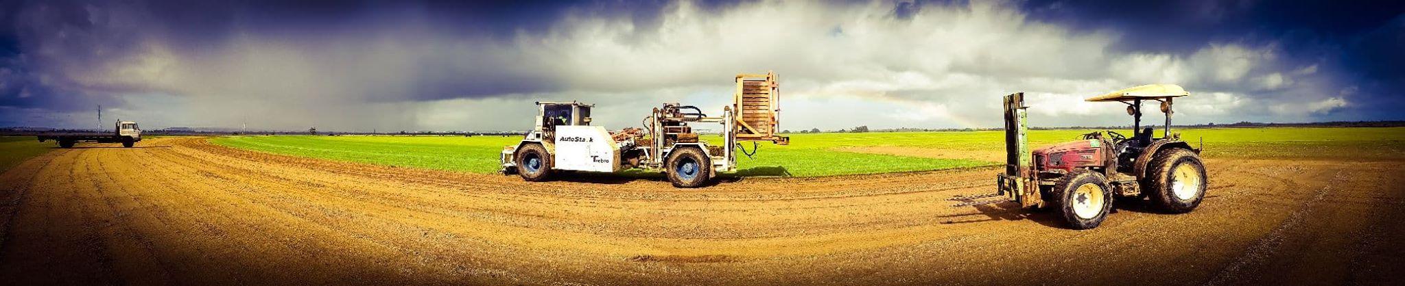 Action shot taken on the farm in Regans Ford