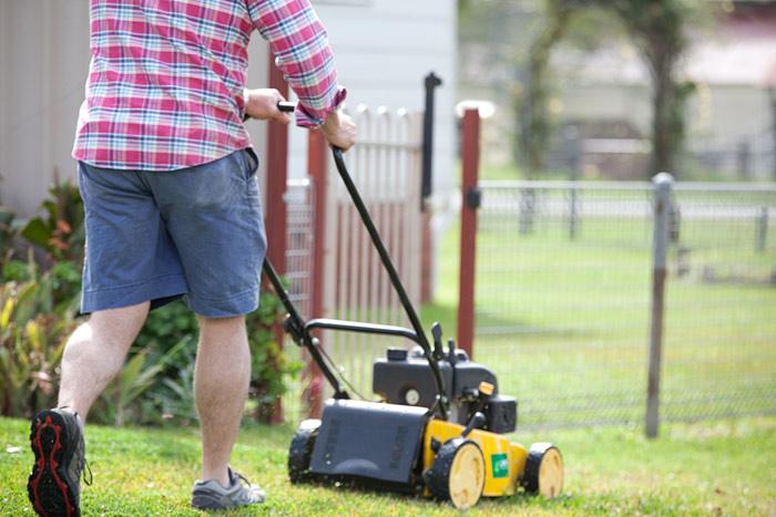 LSA lawn mower no head pic.jpg