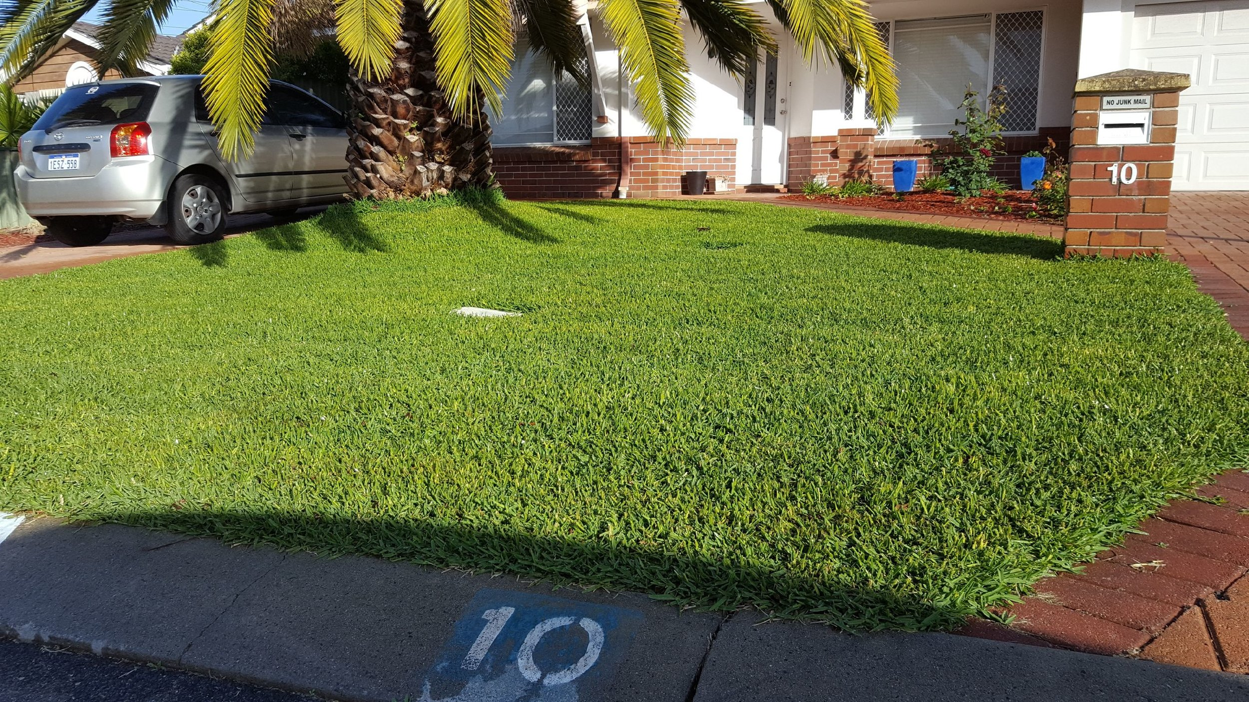 A perfect lawn in Perth