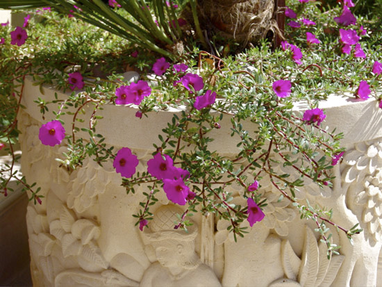 Carved stone planters from Bali and local flowers add color to the verandas.