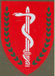 Insignia of the IDF Medical Corps.