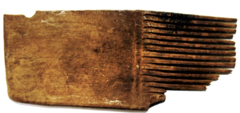 Wooden comb found in the Cave of the Pool, near Nahal David in the Dead Sea region. It was discovered in 1961.  From Mumcouglu and Hadas. Head Louse (Pediculus humanus capitis) Remains in a Louse Comb from the Roman Period Excavated in the Dead Sea Region.    Israel Exploration Journal   , Vol. 61, No. 2 (2011), pp. 223-229