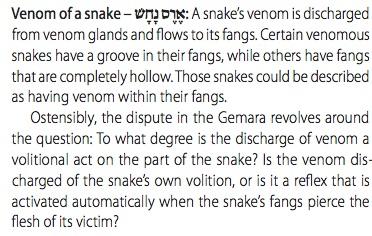 From the Koren Talmud Sanhedrin vol II, p 197.