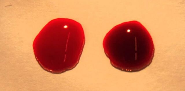 On the left, bright red oxygenated (arterial) blood. On the right, darker deoxygenated (venomous) blood.