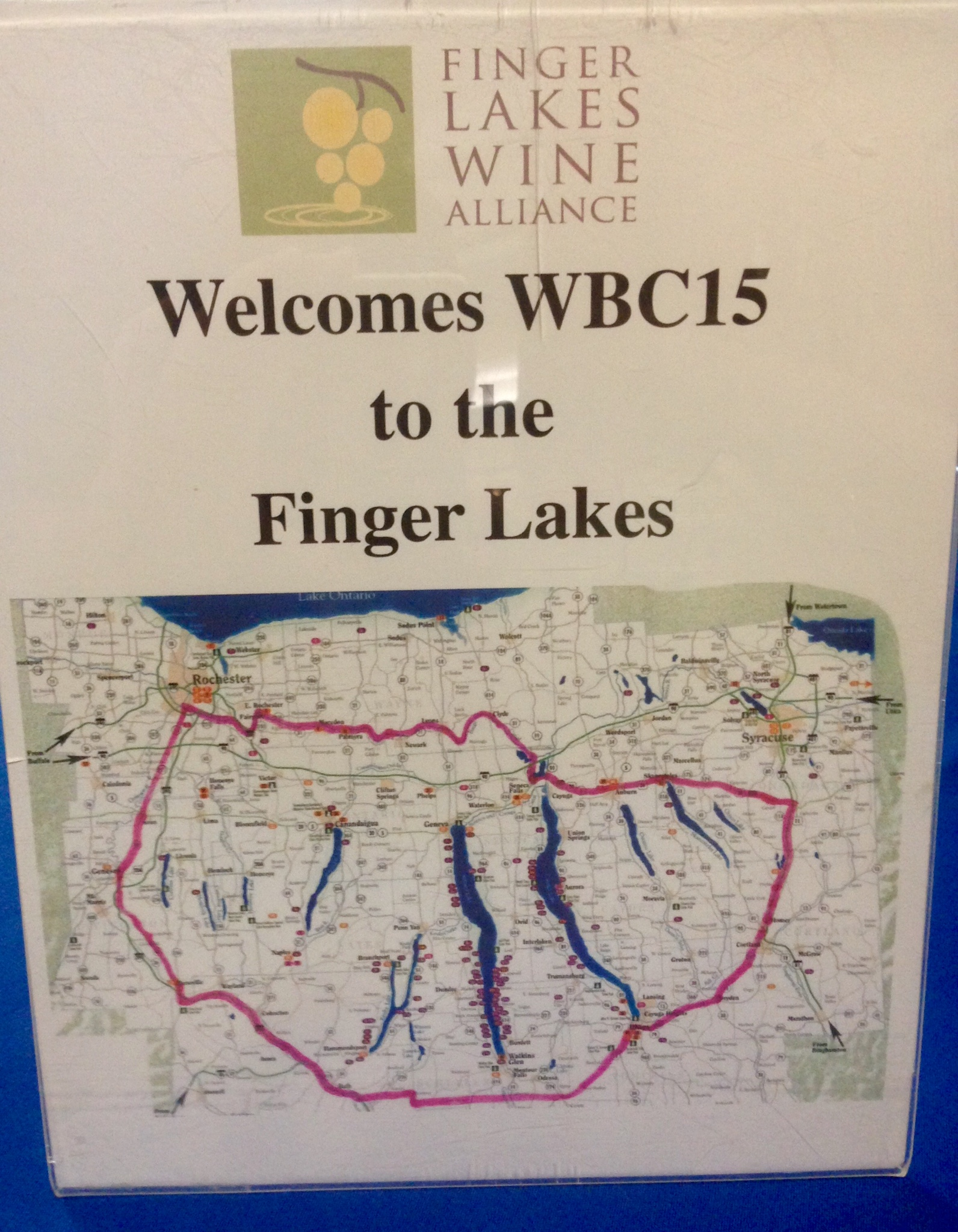 Map of The Finger Lakes illustrates how the area became known as such. Like fingers of a hand, the long narrow lakes span many miles.