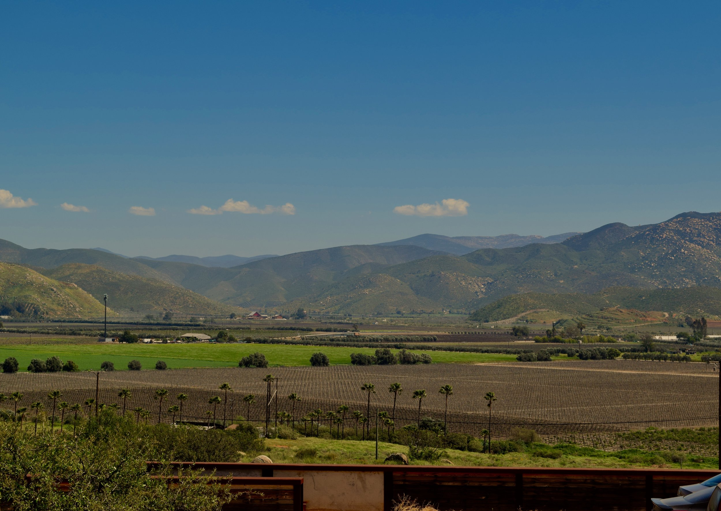 View from Encuentro Guadalupe. Photo by Gabriel Manzo.