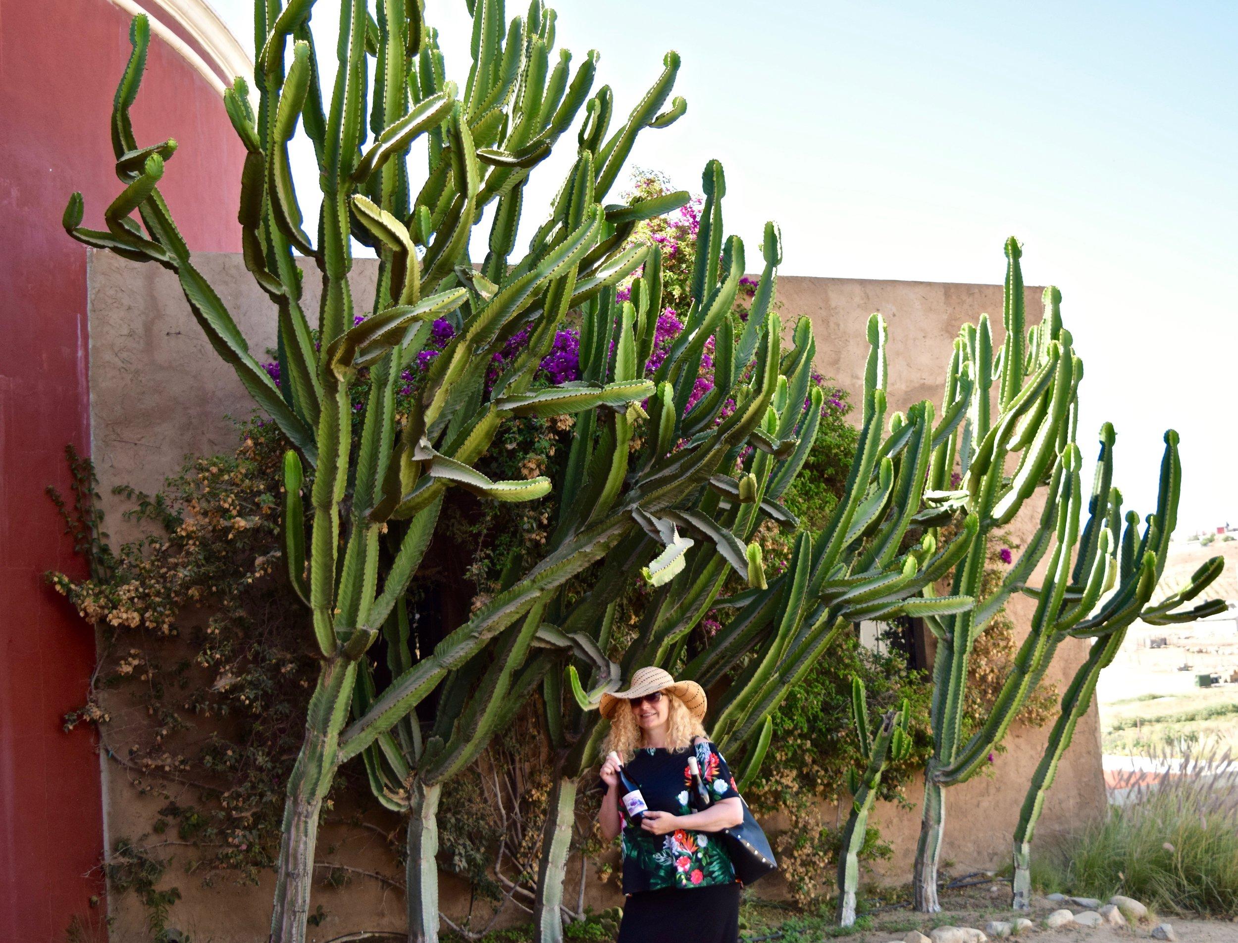 la lomita- cacti & joanna with wine.jpg