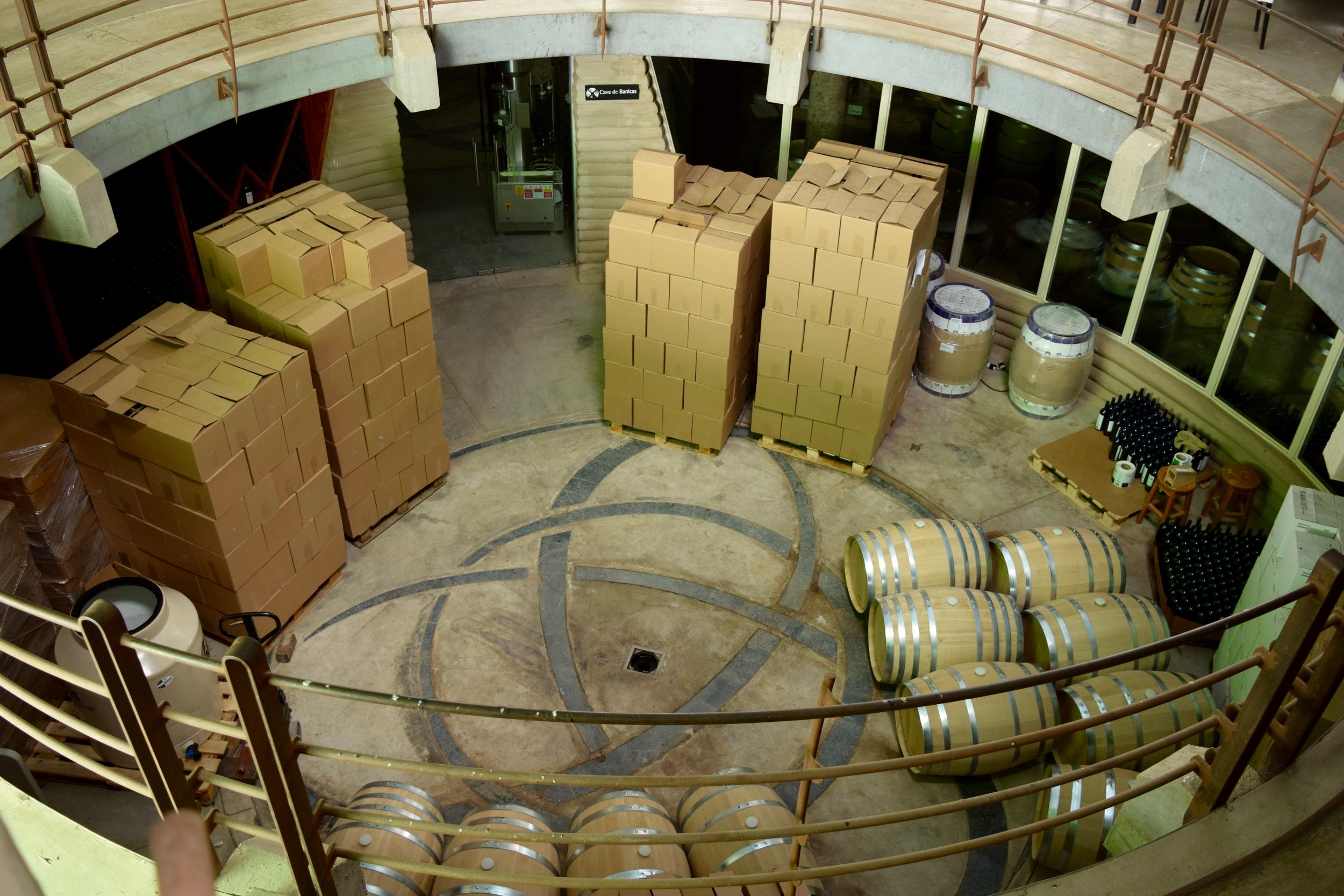 alximia- looking down on wine barrels.jpg