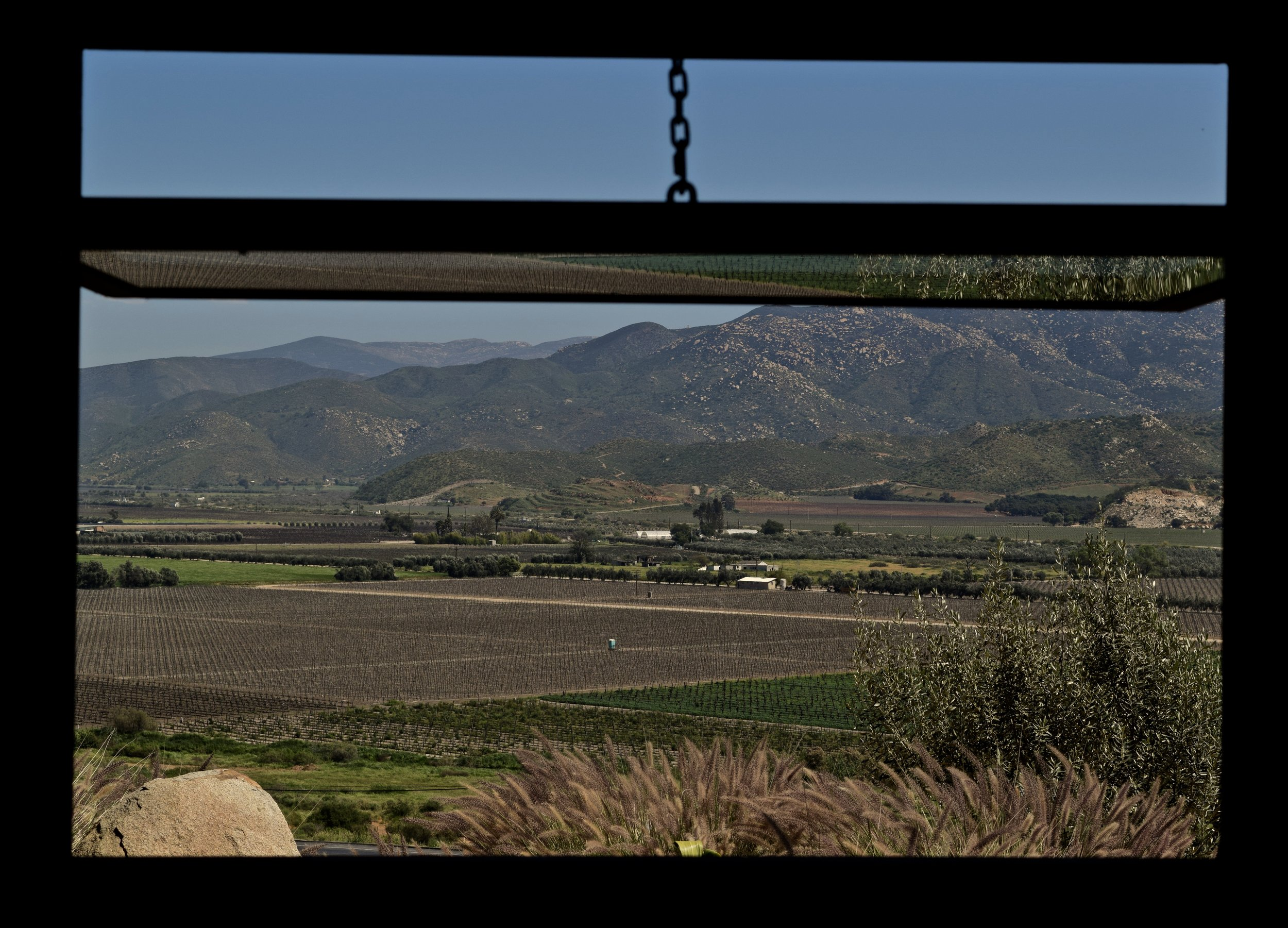 View out of the tasting room window at Encuentro Guadalupe. Photo by Gabe Manzo.