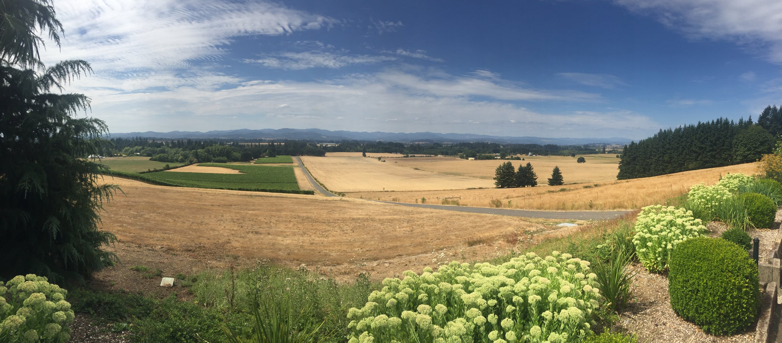 The Willamette Valley, Oregon. Photo by Gabriel Manzo.