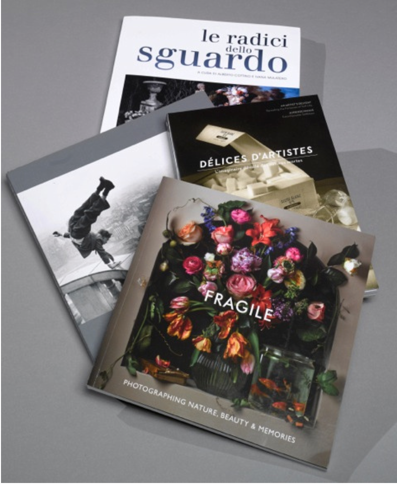 Selection of 2013 Catalogues