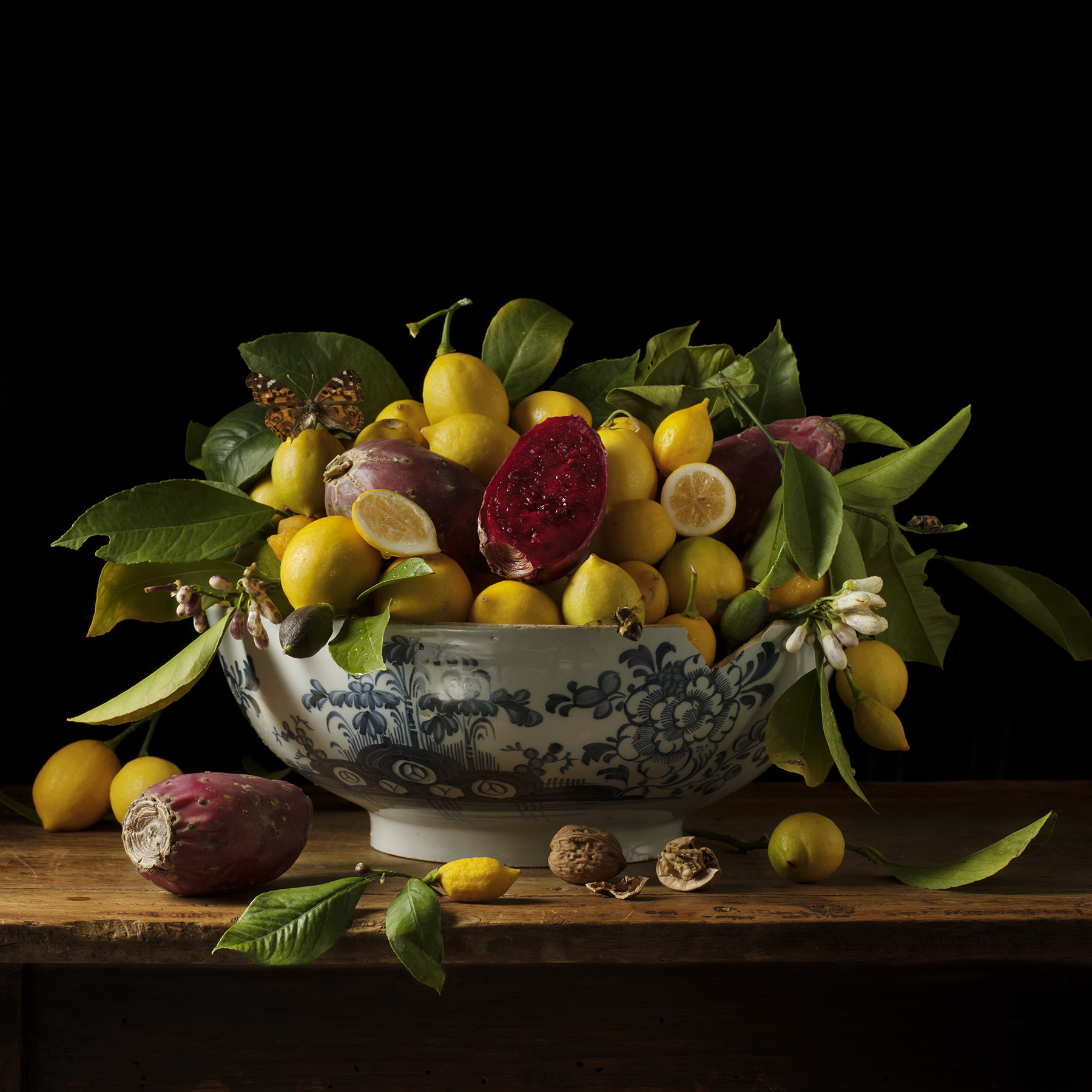 Lemons and Prickly Pears, 2013