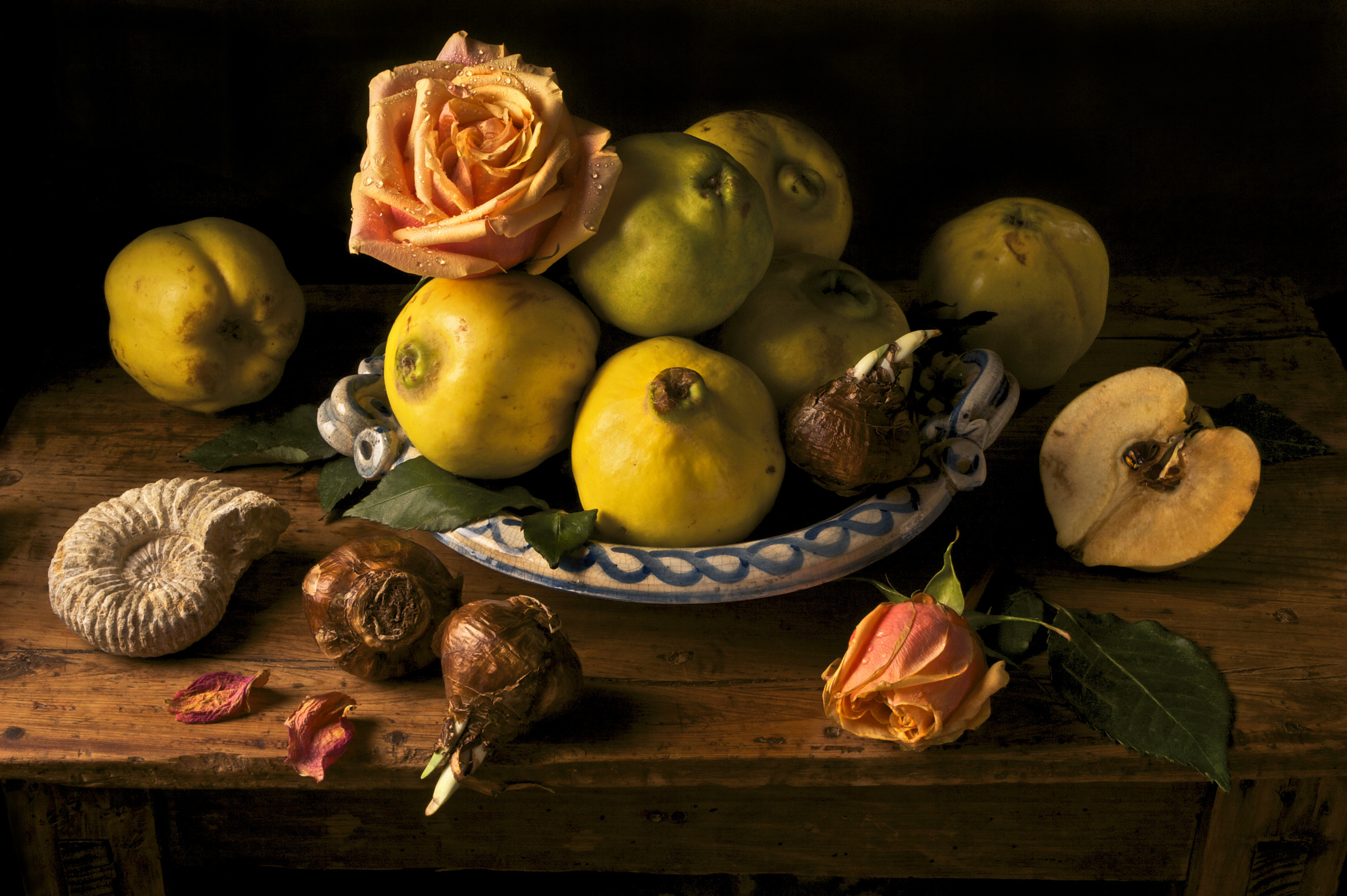 Quince, After G.G., 2008