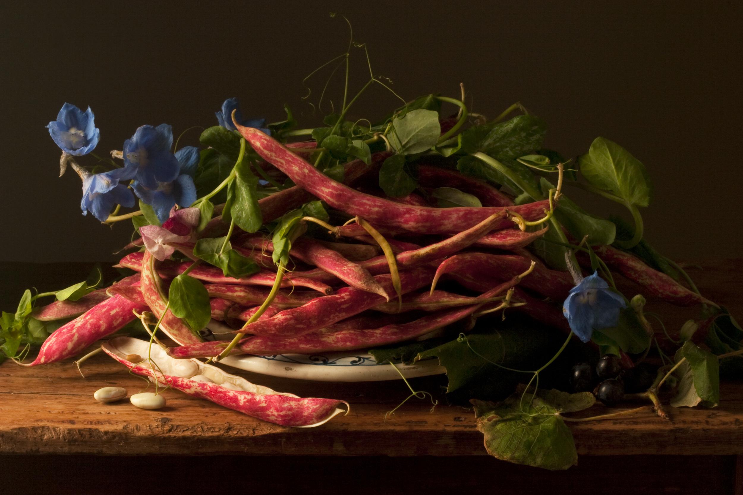 Cranberries Beans, After G.G., 2009