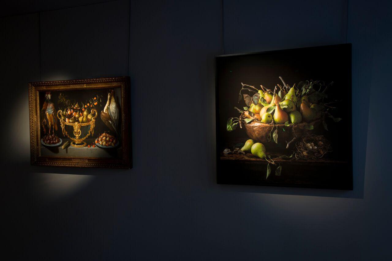 Colnaghi  Seizing Beauty Exhibition - Natura Morta series