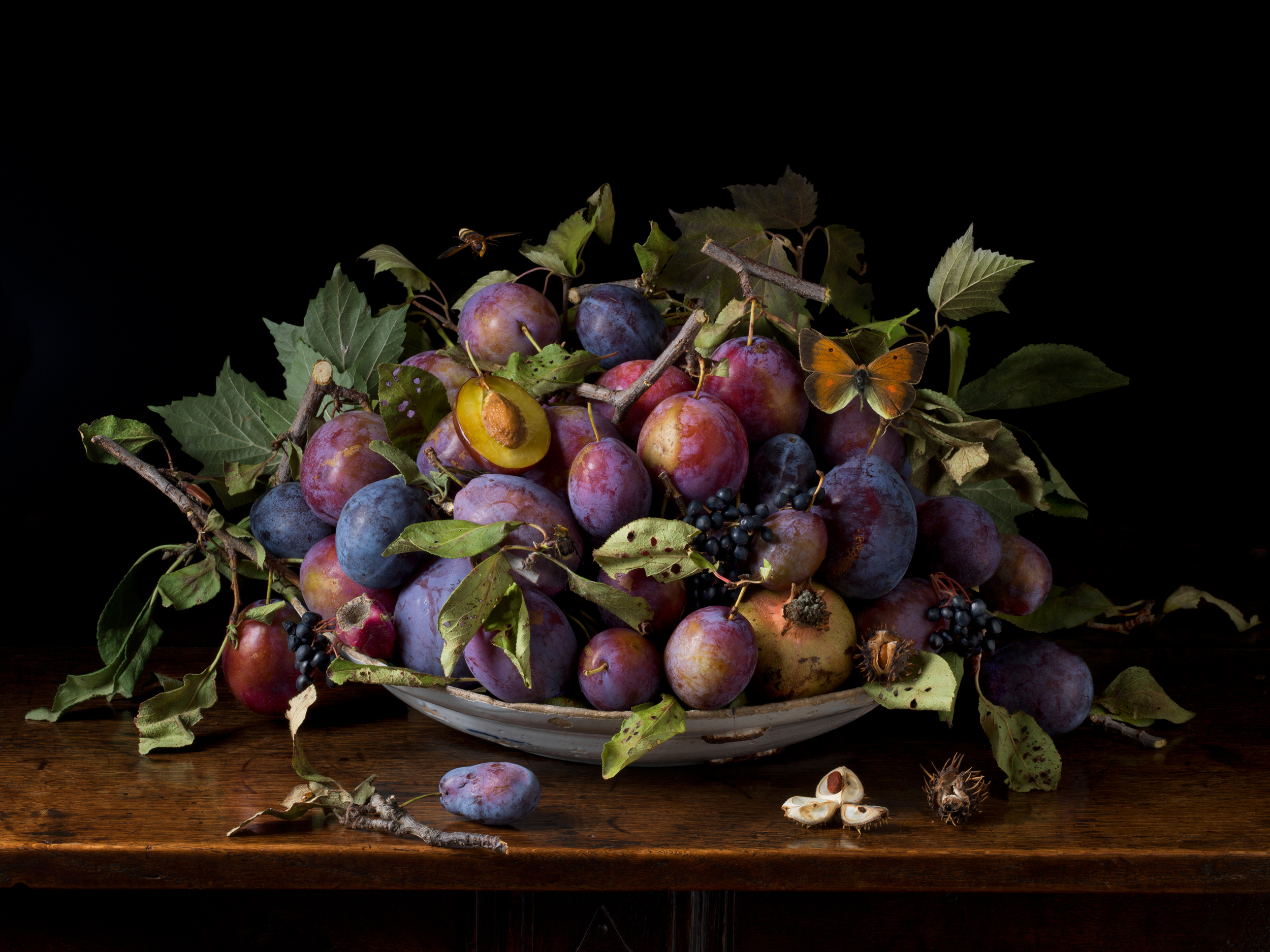 Italian Plums, After G.G. 2015