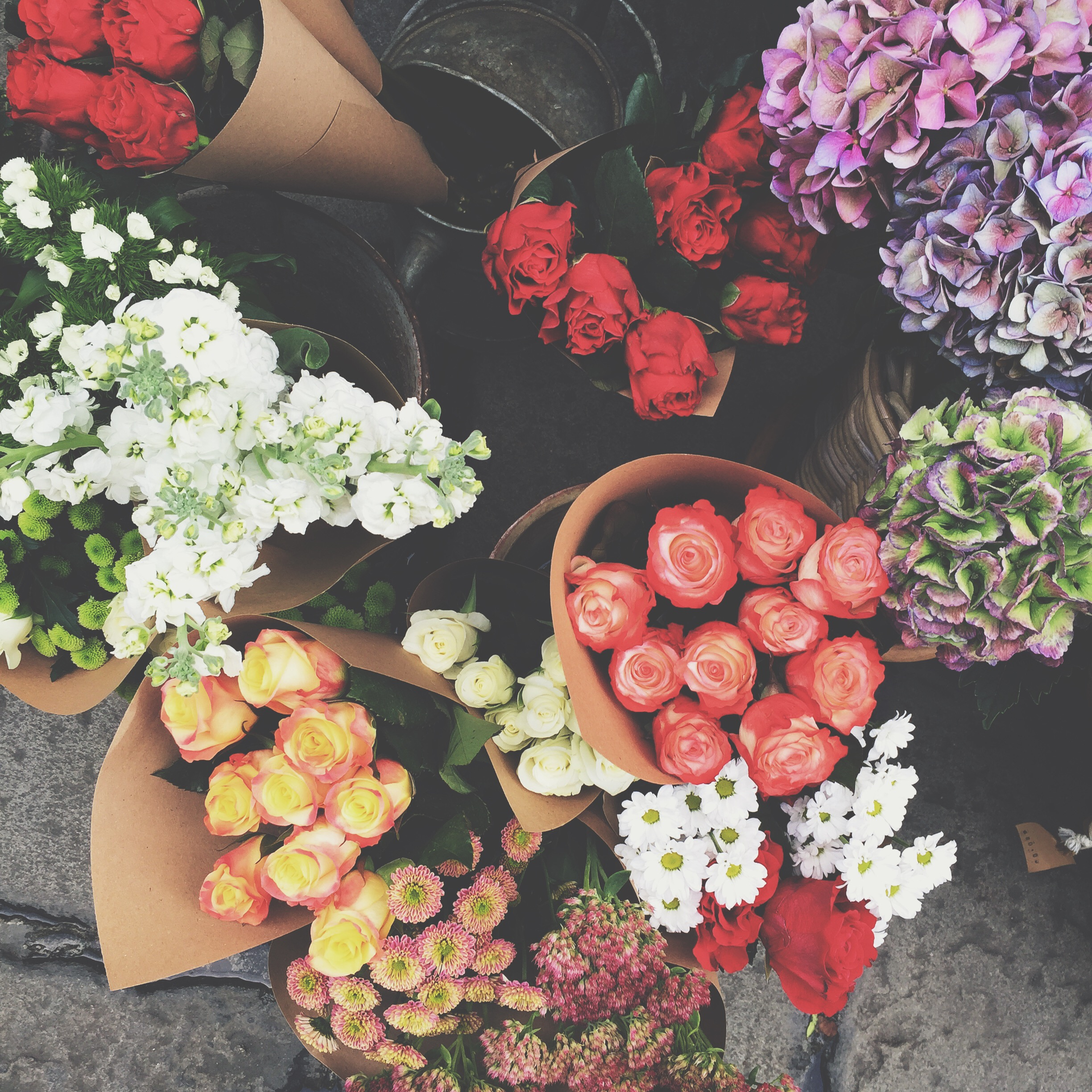 Flowers in Italy.