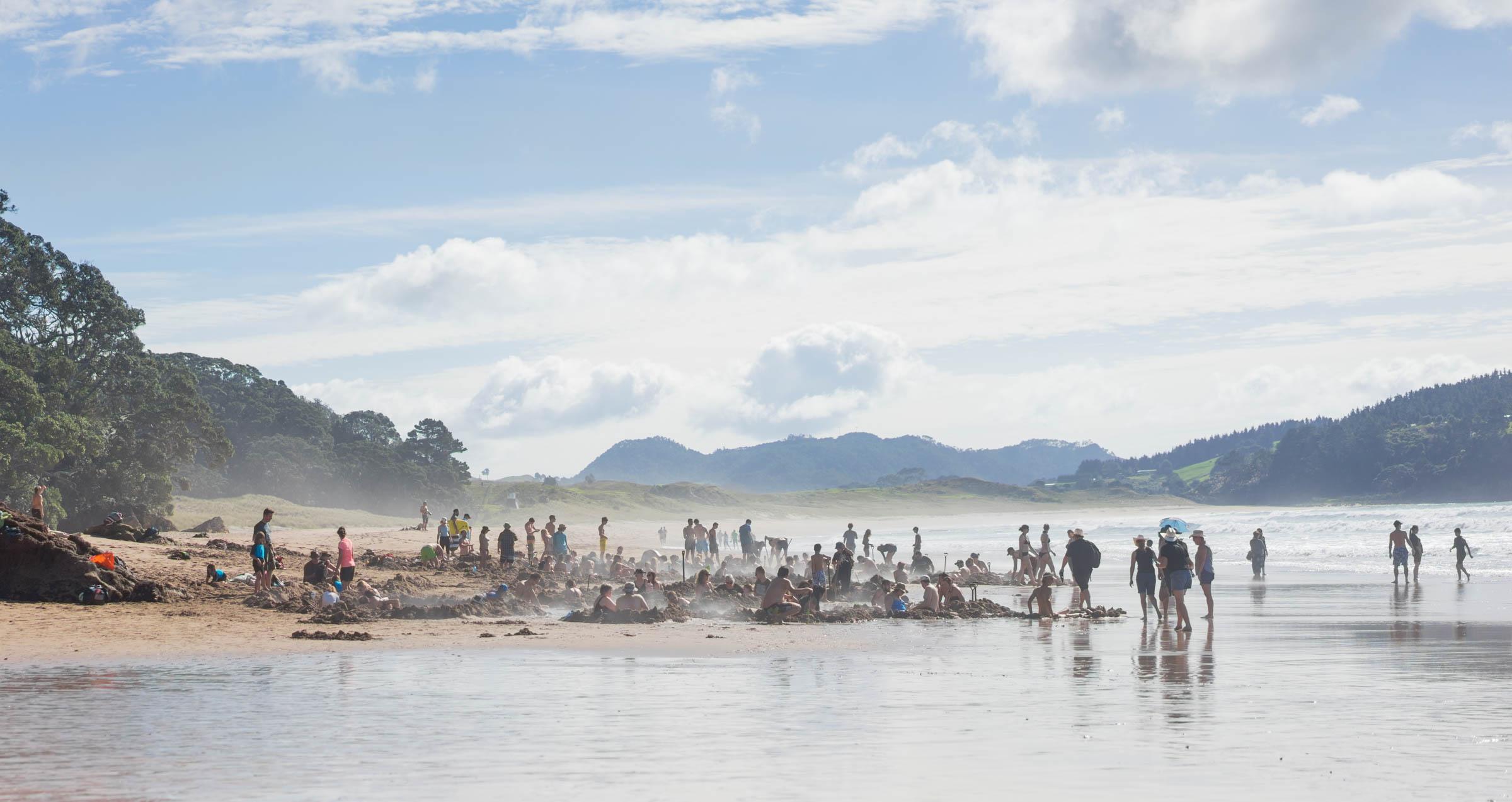 NZ-9.jpg