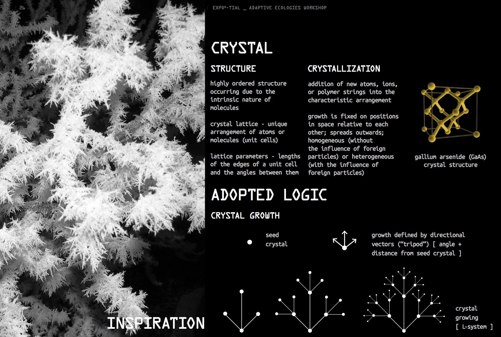 expon-tial-7.jpg