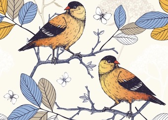 Illustration zwei Vögel