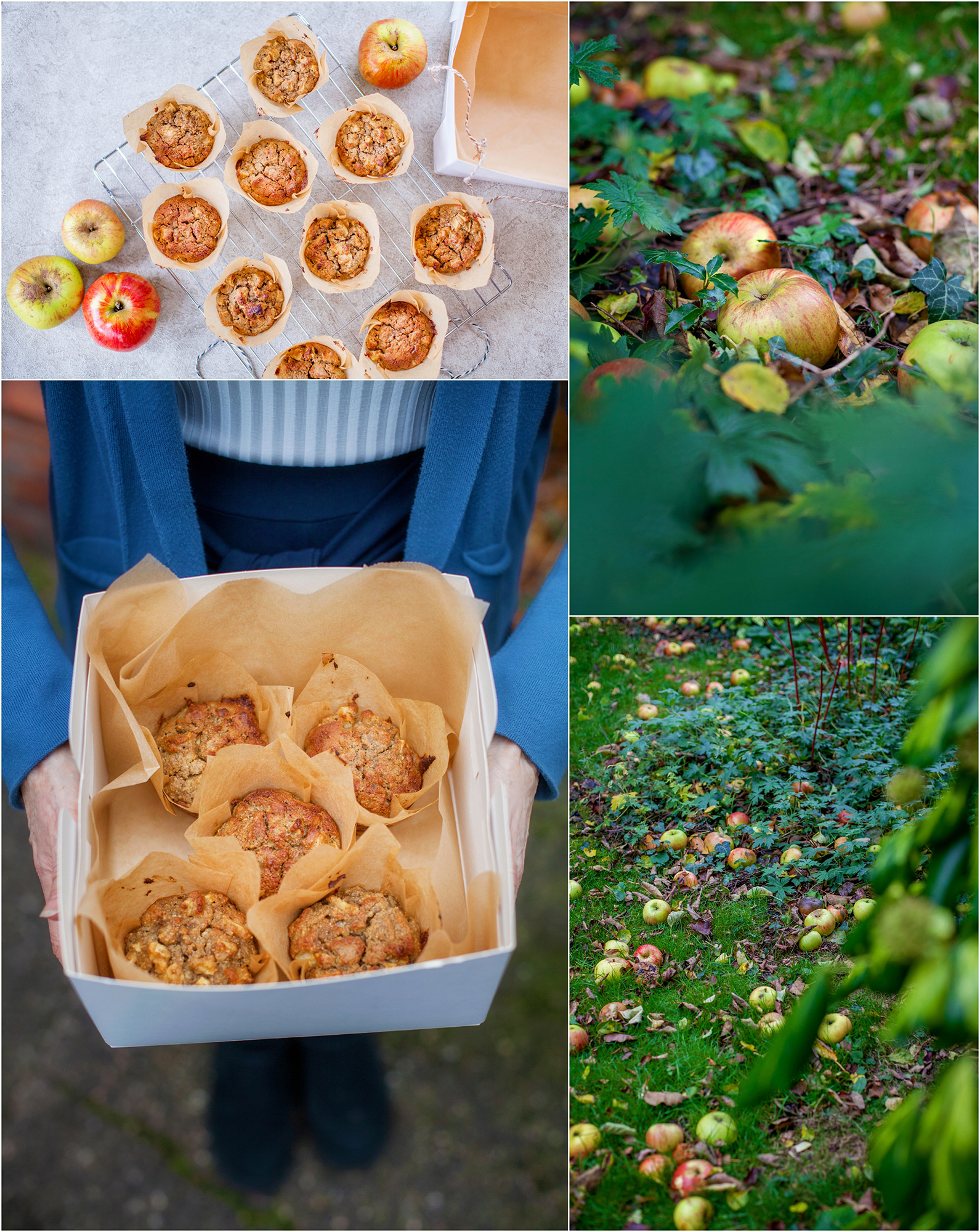 apple pie muffin recipe.jpg