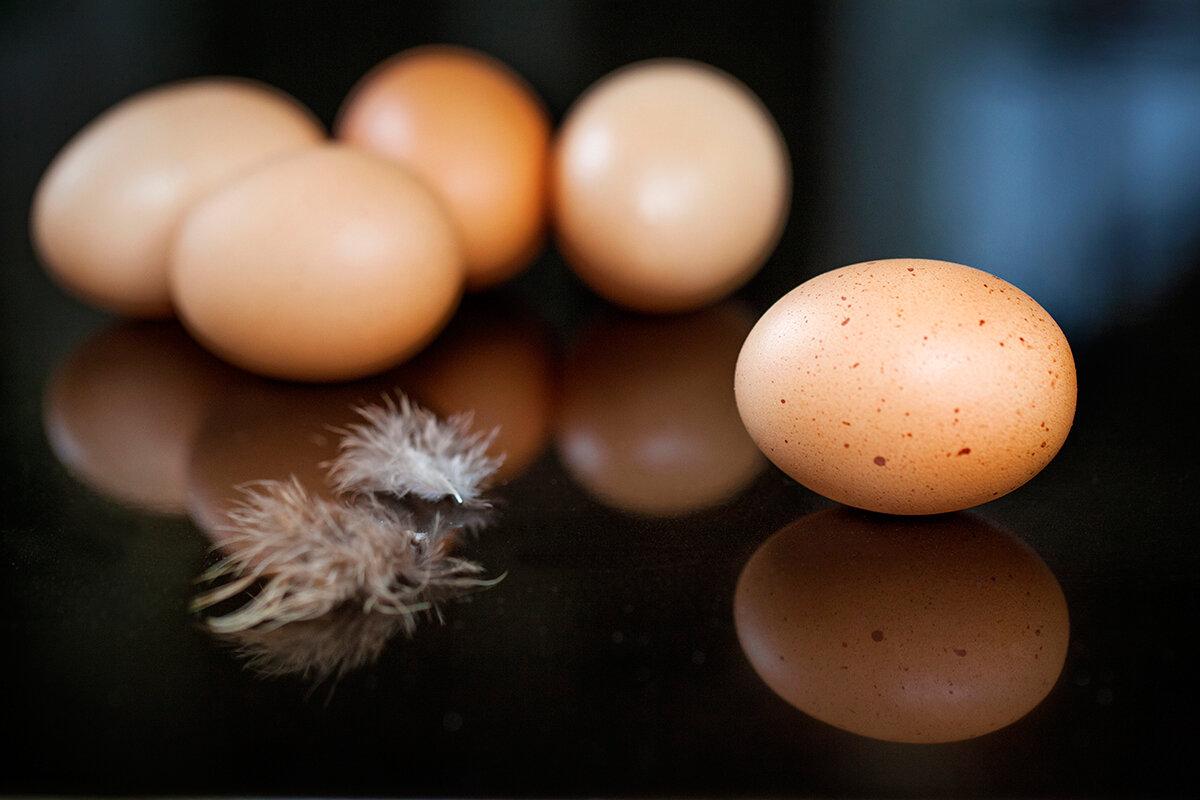 health coach food medic eggs.jpg
