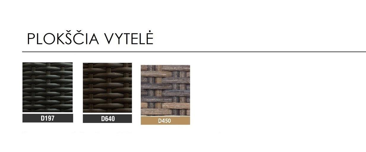 PLOKSCIA+VYTELE+2020.jpg