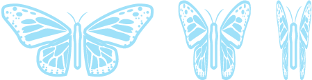 Butterfly@2x-8.png