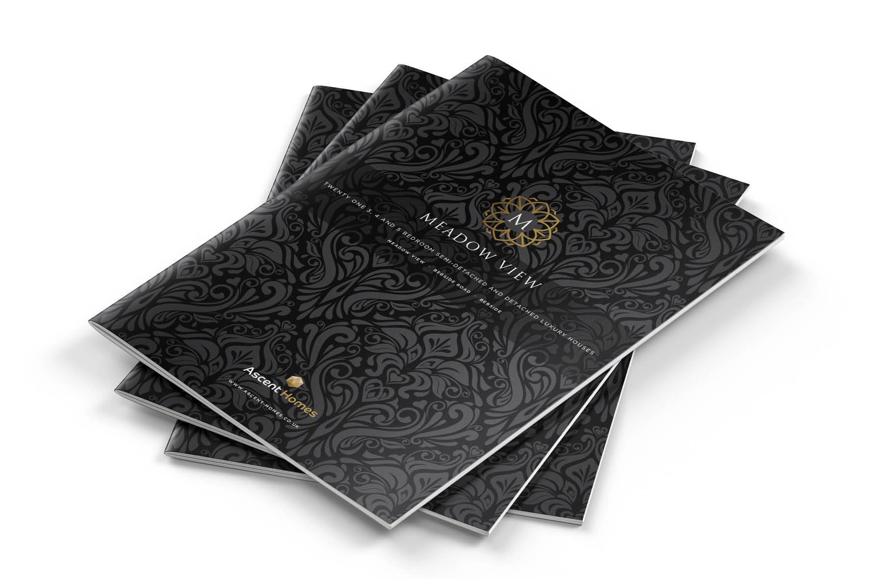 incredible_ascent_brochures_.jpg