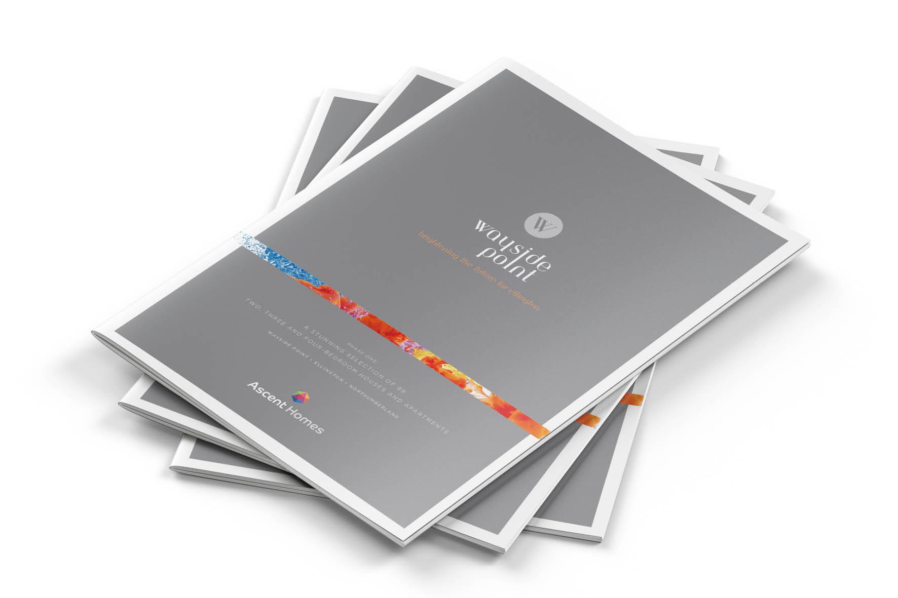 incredible_ascent_brochures_5.jpg