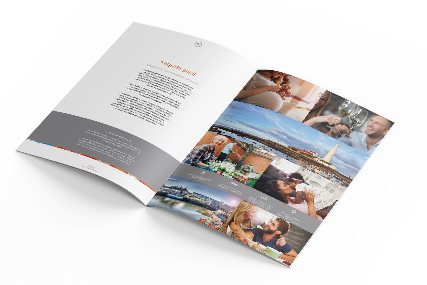 incredible_ascent_brochures_7.jpg