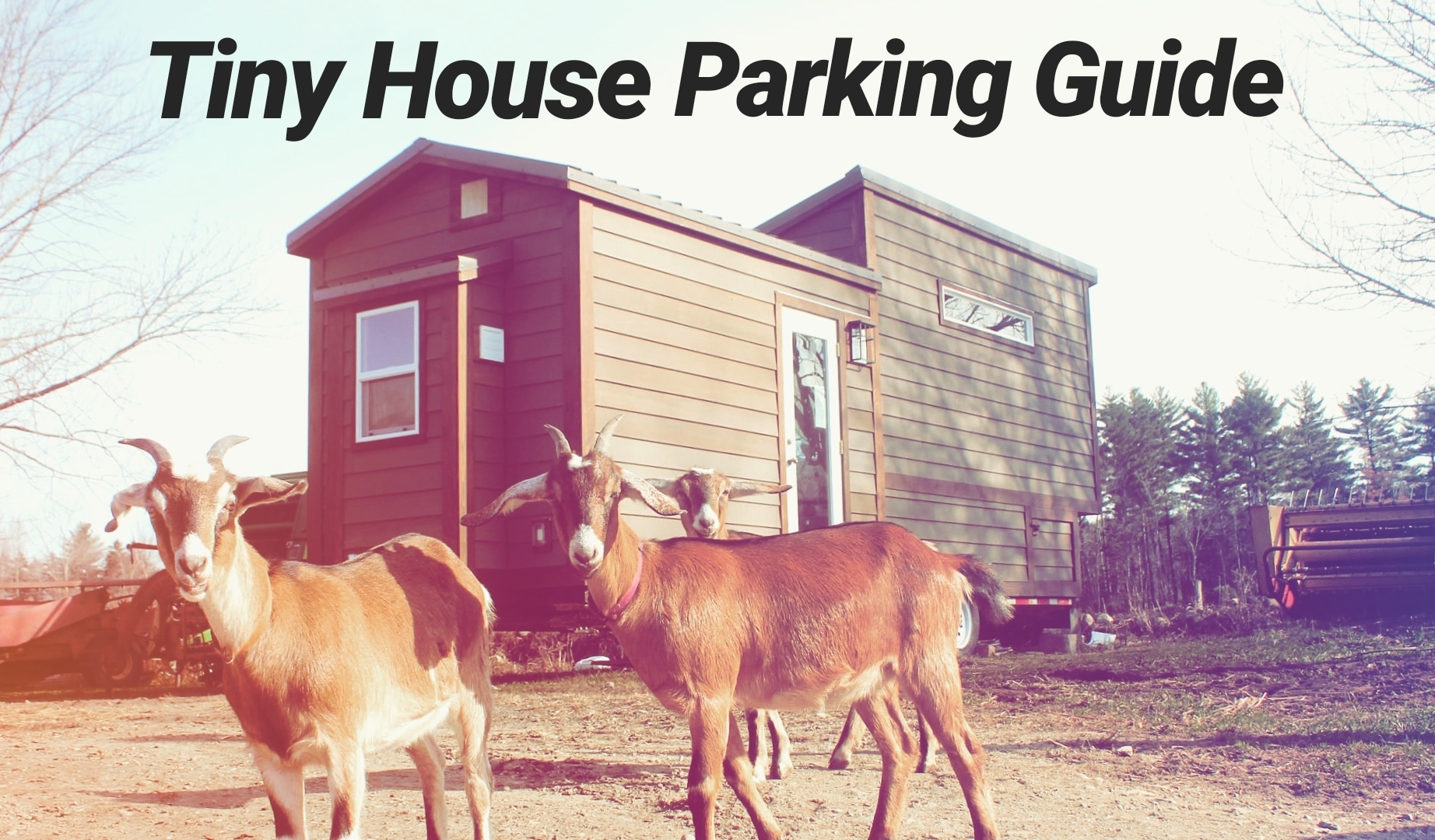 tiny-house-parking-guide.jpg
