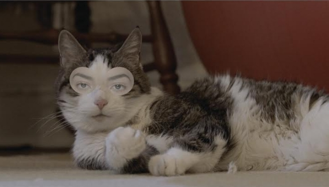 Raemann | Meow