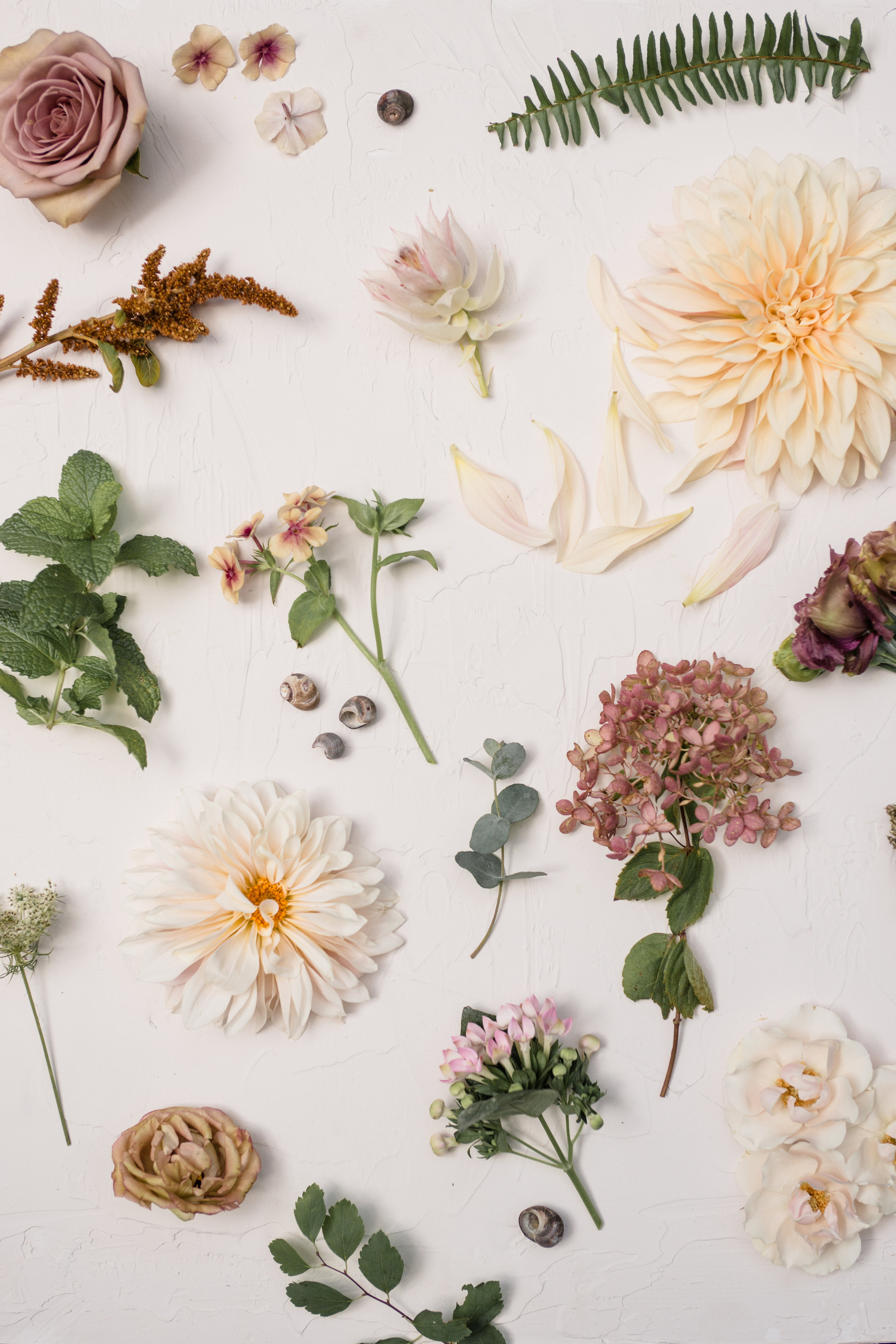 Watershed_Floral_Maine_Coast_Wedding_Inspiration_Bouquet_0195.jpg
